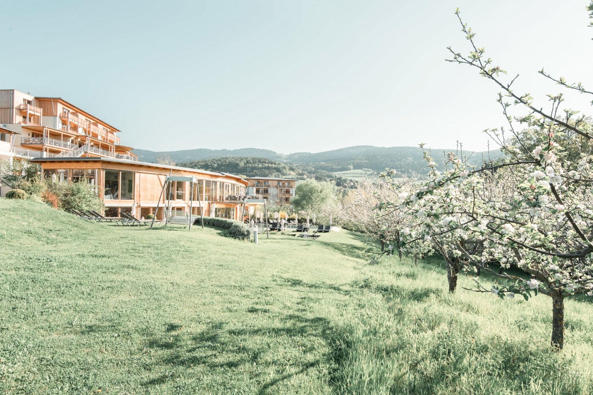 Bäume mit Blüten mit Hotel und Wellnessbereich