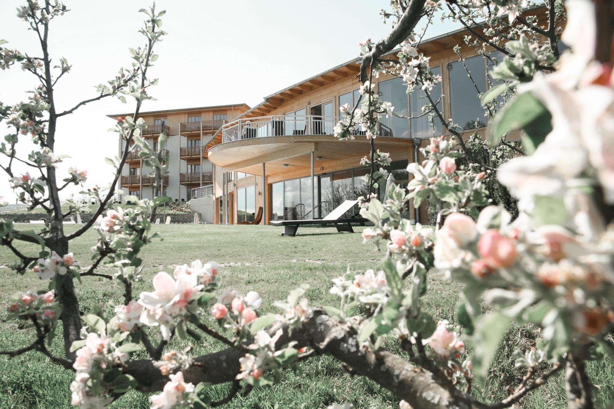 Blütenzweige mit Hotel
