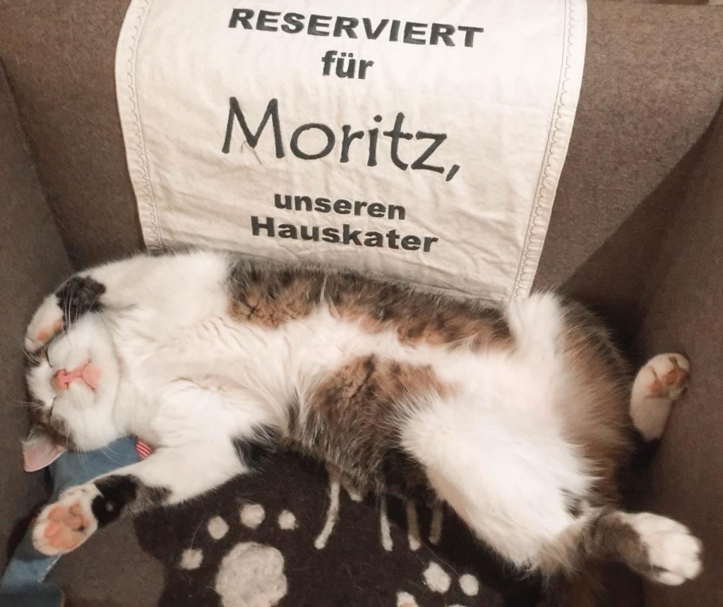 Moritz_Biohotel_Wellnesshotel_Retter_Oststeiermark_Pöllauberg