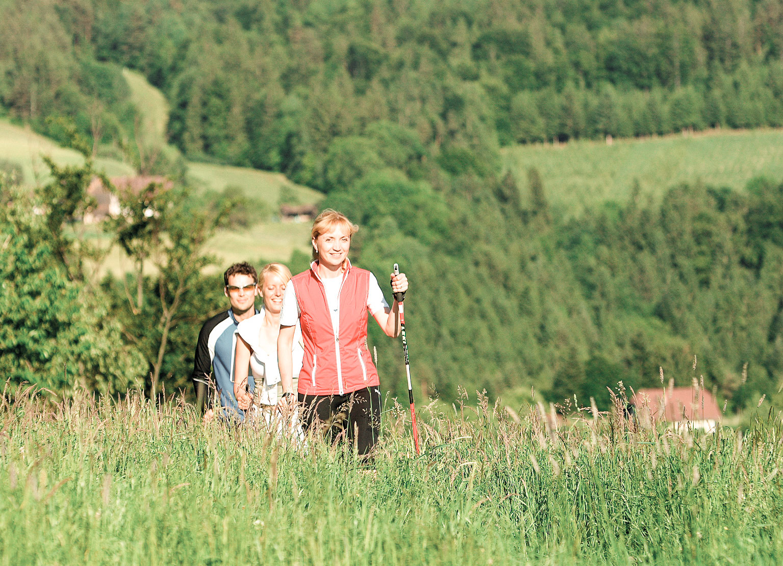 Nordic Walking Tour oder Wanderung auf den Pöllauberg mit Ulli Retter