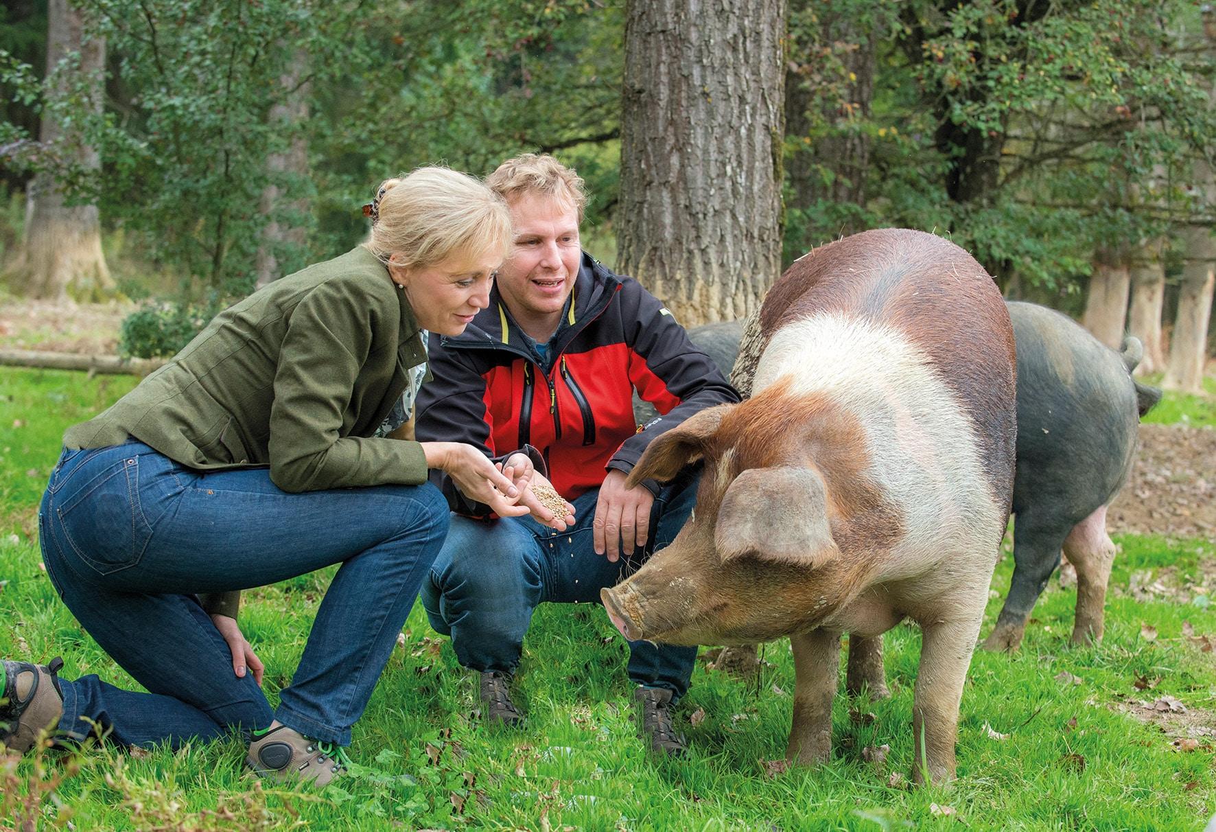 Lieferant Labonca Biohof Sonnenschweine