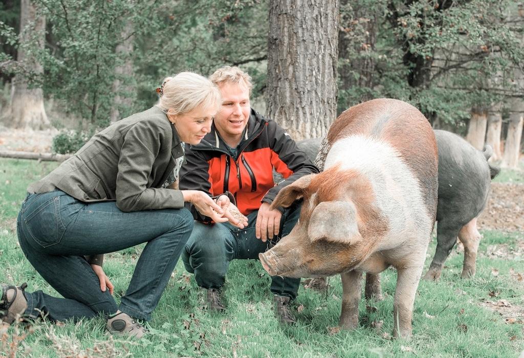Lieferant Labonca Biohof Sonnenschweine und Ulli Retter