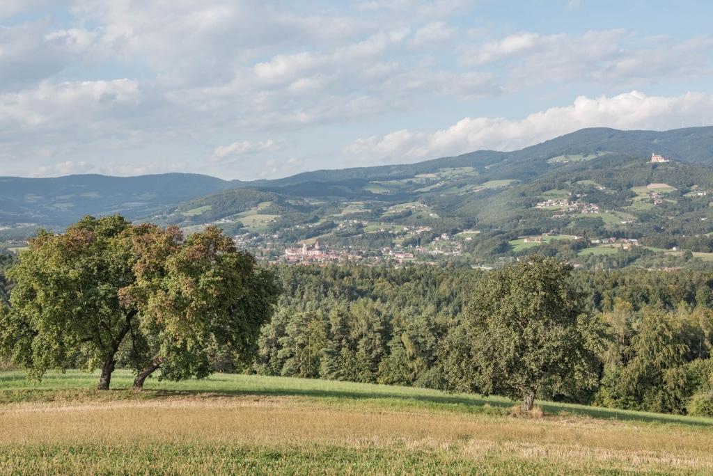 Ideale Landschaft für Liebhaber von Cabrios und Oldtimer, Retter Bio-Natur-Resort.