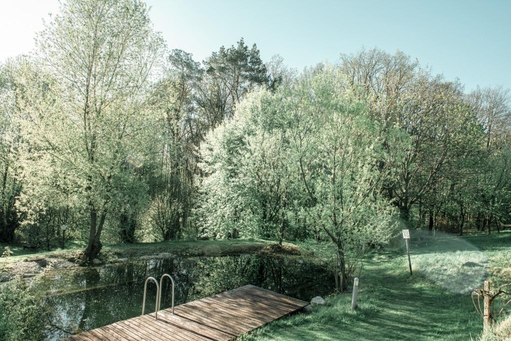 Naturbadeteich mit Garten im Wellnesshotel Retter